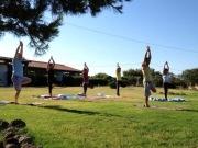 Open Yoga